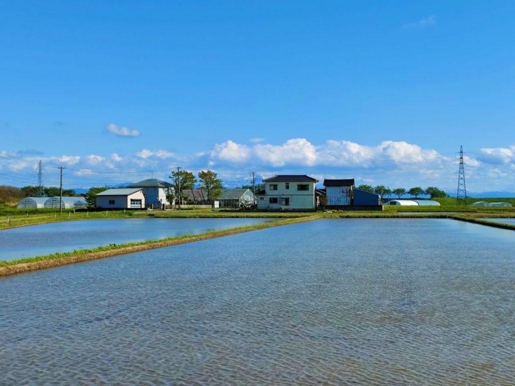 田園風景と住宅